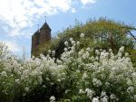 Sissinghurst Castle Garden, Kent, GB